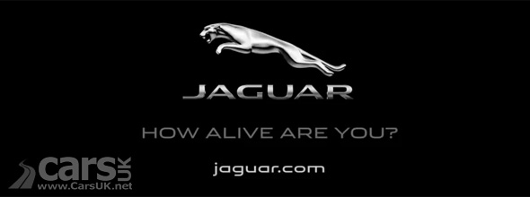 Jaguar Alive Campaign