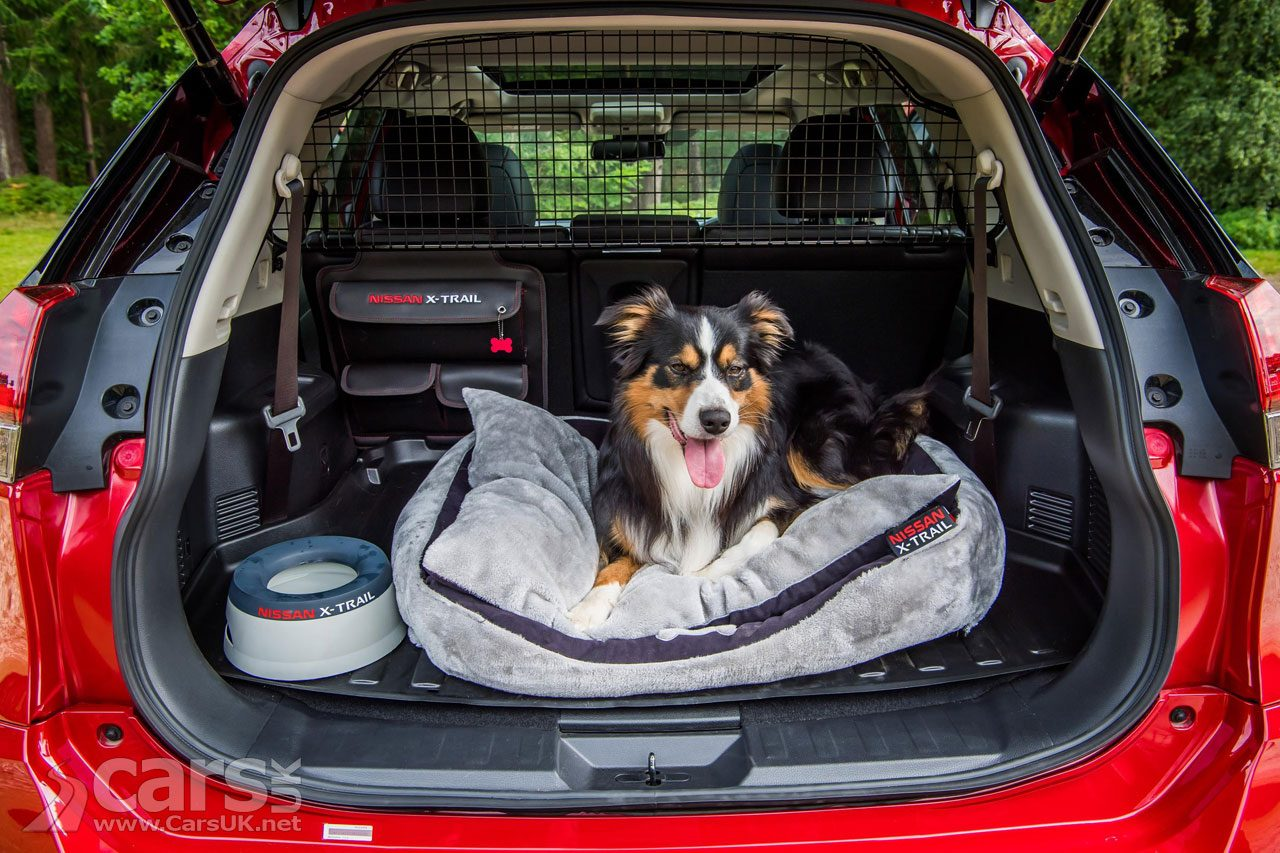 Nissan X-Trail PAW PACK makes the X-Trail a Dog Friendly SUV