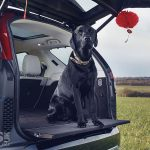 Land Rover and Range Rover go DOG friendly