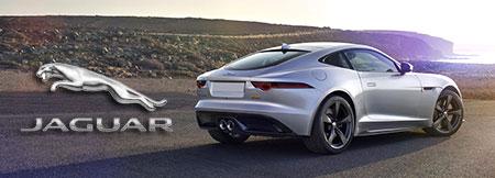 Jaguar Specialist